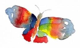 butterfly_new.jpg