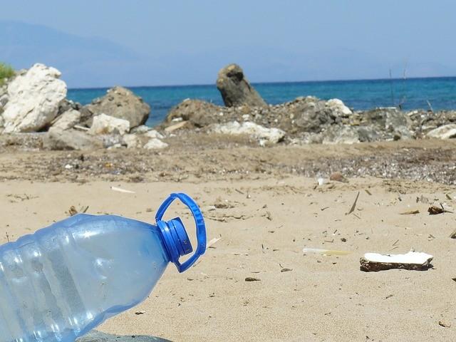 Debellare l'inquinamento causato dalla plastica con la tarma indiana