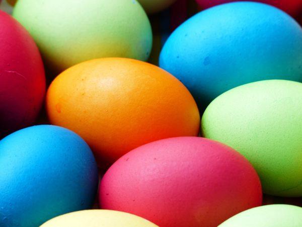 egg-100165_1920