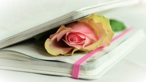 Il lento ed abominevole stillicidio quotidiano della poesia e di una generazione. | Noi Mamme 1