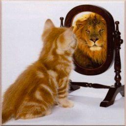 Sumeri e somari: una questione di autostima (storie ordinarie di dislessia)