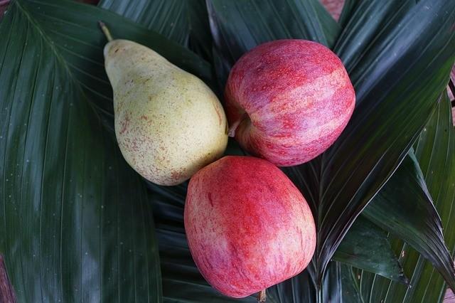 Svezzamento 6 mesi: ricetta Dessert di Pera e Mela preparato con il Bimby