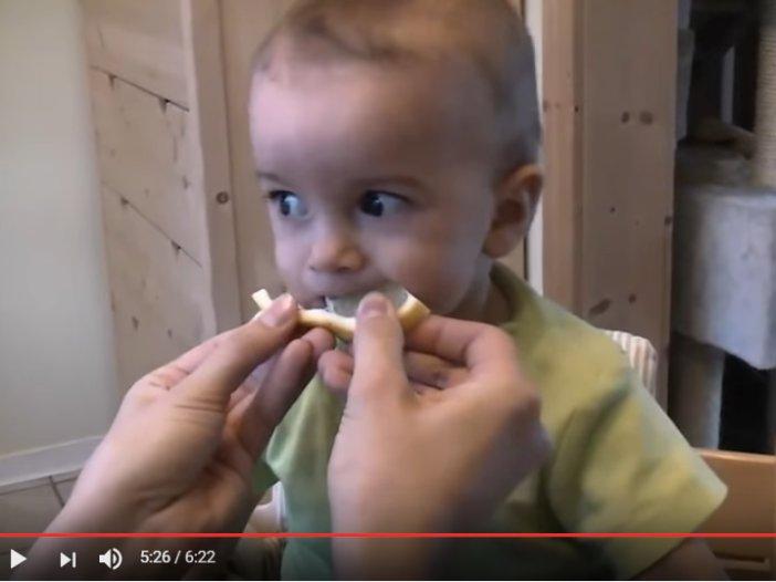 Il baby e il limone: compilation di reazioni divertenti   Noi Mamme