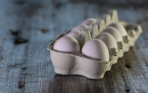 Le uova nello svezzamento