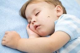Come proteggere i bambini dalle zanzare e da altri insetti?
