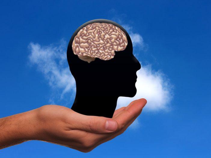 Scienza: scoperti alti livelli di virus dell'herpes nei cervelli dei malati di Alzheimer | Noi Mamme 2