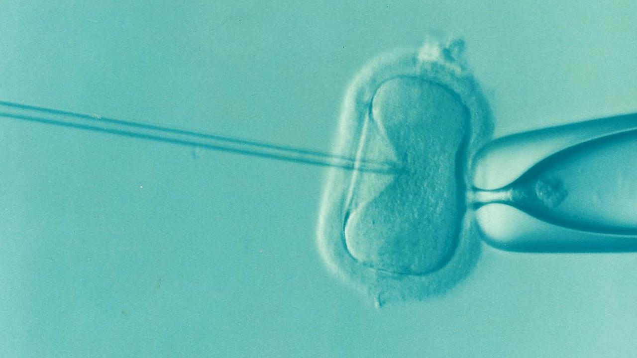 Detrazioni per procreazione medicalmente assistita | Noi Mamme