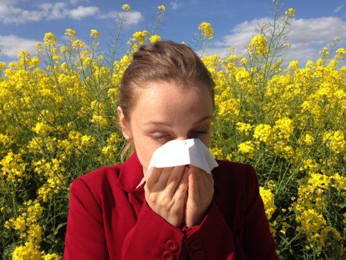 Combatte le allergie