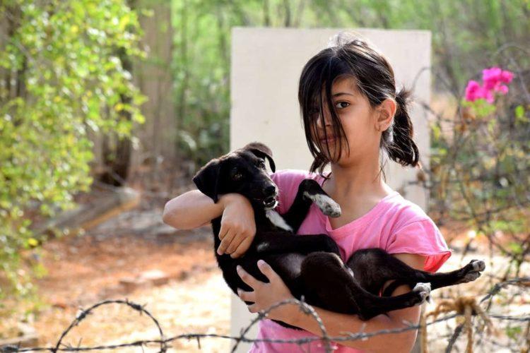 Bambina tiene cane in braccio